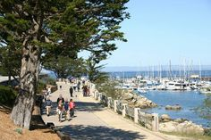 Monterey California  Walked this many times already