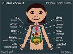 Partes de cuerpo Chile, Patagonia, Language, Study, Culture, Education, Crochet, Block Prints, Frases