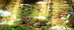 Прогноз погоды на неделю: летнее тепло и дожди https://joinfo.ua/weather/1202167_Prognoz-pogodi-nedelyu-letnee-teplo-dozhdi.html {{AutoHashTags}}