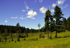 Landscape Slovak
