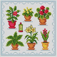 House Plants.  Tons of FREE CROSS-STITCH PATTERNS at this site: http://cross-stitchers-club.com/?code_avantage=uucqid      Plus, if you click on this link, http://cross-stitchers-club.com/?code_avantage=uucqid , you'll automatically receive a gift when you subscribe. I use this site all the time; there are hundreds of all different types of patterns, and there are new patterns added everyday. It's really worth a look.