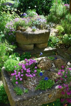 beautiful trough garden