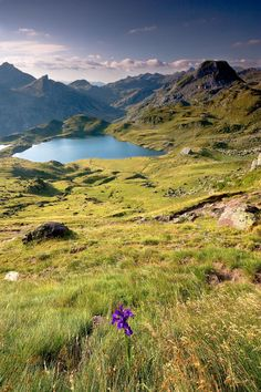 Who needs the iris in this shot? What gorgeous scenery! Lac de Fabreges, France (by Places Around The World, Oh The Places You'll Go, Places To Travel, Places To Visit, Around The Worlds, What A Wonderful World, Wonderful Places, Beautiful Places, Beautiful Scenery
