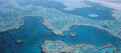 World War Two aircraft wreckage found on Great Barrier Reef   Great Barrier Reef holidays   Distant Journeys
