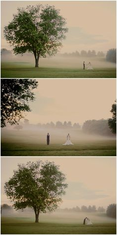 fog, tree and the couple. always a favorite! Kristin Partin Photography