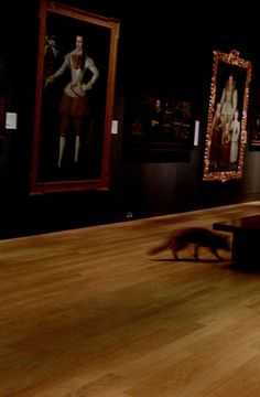 The Nightwatch by Francis Alys (2004). Surveillance cameras observe a fox exploring the Tudor and Georgian rooms of the National Portrait Gallery at night.