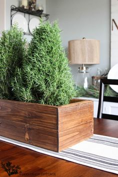 Christmas Home Tour 2013 by The Wood Grain Cottage rosemary centerpiece Country Christmas, Simple Christmas, All Things Christmas, Christmas Holidays, Christmas Crafts, Christmas Decorations, Holiday Decor, Old Wooden Boxes, Wooden Diy