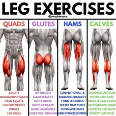 🦵Need a complete breakdown of leg exercises to build your leg day?🦵 - What are you favourite exercises for legs? Leg Workout At Home, Leg Day Workouts, Leg Exercises, Fitness Exercises, Workout Memes, Gym Workout Tips, Gym Tips, Workout Plans, Workout Routines