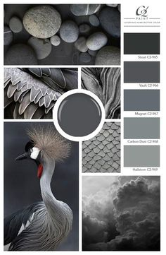Gone are the standard greys of the past decade. With a fresh focus on the undertones, greys are presenting themselves as soft lavenders, blues, greens and bold, nuanced tones that are refreshingly modern. Paint Color Schemes, Grey Paint Colors, Colour Pallette, Interior Paint Colors, Paint Colors For Home, Grey Color Palettes, Bedroom Color Palettes, Silver Color Palette, Interior Design