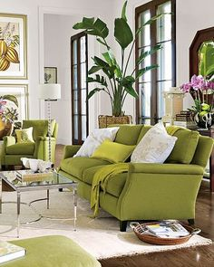 Living Room Green, Home Living Room, Living Room Decor, Living Spaces, Living Room Colors, Living Area, Green Sofa, Purple Couch, Green Chairs
