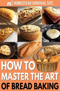 How To Master The Art Of Bread Baking - Homestead Survival Site Beginner Baking Recipes, Baking For Beginners, Baking Basics, Cooking Recipes, Cooking Tips, Oven Cooking, How To Make Bread, Food To Make, Survival Food