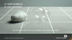 Agence Babel   Institut Pasteur Institut Pasteur, Soap Bubbles, Curiosity, Awards, Advertising