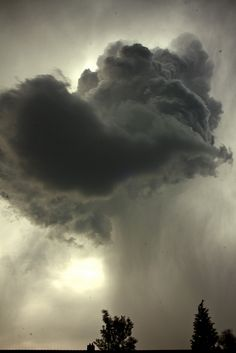 dark storm clouds | pouring rain | summer storm | thunderstorm | the force, power and beauty of mother nature | downpour | treetops | stunning | nimbus | sun halo |deity