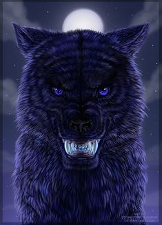 wolf - Page 12 Wolf Photos, Wolf Pictures, Fantasy Wolf, Fantasy Art, Fantasy Creatures, Mythical Creatures, Aggressive Animals, Anime Wolf Drawing, Wolf Artwork