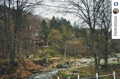 Very near Niš and Prokuplje is #mountain Jastrebac rich with #nature beauty. More about Jastrebac reas on https://www.wheretoserbia.com #wheretoserbia #Serbia #Travel #Holidays #Trip #Wanderlust #Traveling #Travelling #Traveler #Travels #mountains #hiking #naturehippys #naturelovers #natureza #naturephotography #Travelphotography  #Travelblogger #Traveller #Traveltheworld #Travelblog #Travelbug #Travelpics #Travelphoto #Traveldiaries #Traveladdict #Travelstoke #TravelLife
