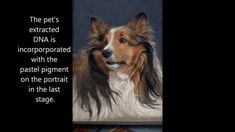 DNA memorial portraits incorporate the pet's extracted and purified DNA, collected from a cheek swab, hair or feather sample. The collected DNA undergoes a s. Dog Dna, Dna Replication, Art Lessons, Painting & Drawing, Pets, Dna Test, Humor, 3d Printer, Feather