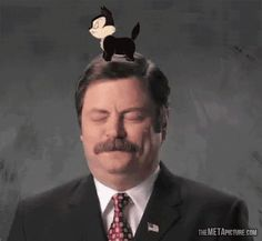 Ron Swanson is finally happy…