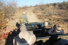 One of the must-try experience in South Africa (or Africa in general) is the safari game drive. The Kruger National Park is one of the … Kruger National Park, National Parks, Safari Game, South Africa Safari, Private Games, Game Reserve, Bird Species, Pet Birds, Habitats