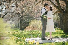 Toronto City Hall Wedding - Springtime daffodils at Osgoode Hall.