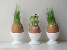 a little delightful: grass seed egg plantings