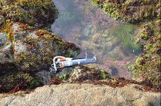 Ocean acidification along California coast   WASHINGTON, March 18 (UPI) -- Ocean acidification is a growing threat ...