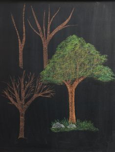 Chalkboard Drawings in the Waldorf Classroom