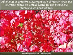 All change is creative movement in a direction that the universe allows to unfold based on our intentions (conscious or unconscious).