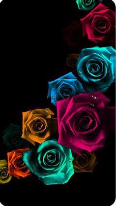 Butterfly Wallpaper, Cute Wallpaper Backgrounds, Aesthetic Iphone Wallpaper, Flower Wallpaper, Cute Wallpapers, Phone Wallpapers, Exotic Flowers, Colorful Flowers, Beautiful Flowers Wallpapers