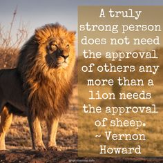 Inspirational Lion Quotes Do I believe in arbitration? But not in arbitration between the lion and the lamb, in which the lamb is in the morning found inside the Lion Spirit Animal, Animal Spirit Guides, Your Spirit Animal, Wolf Spirit, Hope Quotes, Cat Quotes, Animal Quotes, American Lion, American History