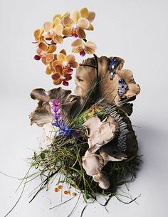 Germany Photography, Still Life Photography, New Artists, Wall Collage, Art Direction, Floral Design, Set Design, Bloom, Vogue