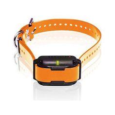 Dogtra Edge RT Trainer Extra Collar - Orange