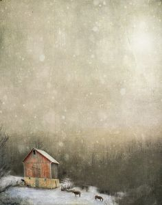 By Jamie Heiden mornings are an hour earlier but the sun is still up when the chickens want dinner. Goodbye winter … until we meet again. Photo Texture, Old Barns, Winter Landscape, Winter Scenes, Art Plastique, Home Art, Art Photography, Art Gallery, Illustration Art