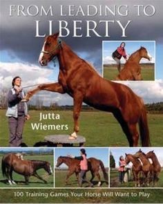 liberty training for horses | Home Books Training The Horse From Leading to Liberty - 100 Training ...