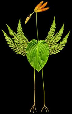 animals and birds made from leaves, sticks and flowers. Even though they won't last making them and photographing them on a camera, smartphone or ipad could be a wonderful way to capture the creativity.