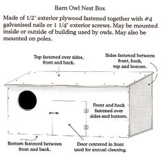 Instructions & Illustration for assembly of Barn owl Nest Box Owl Nest Box, Owl Box, Bug Hotel, Screech Owl, Bird Houses Diy, Great Horned Owl, Nesting Boxes, Outdoor Projects, Garden Projects