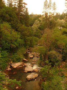Deer Creek <3 . Nevada City, Ca