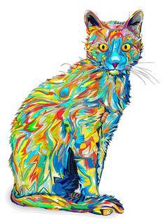 gif trippy cat - Поиск в Google