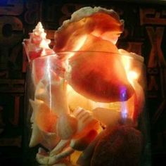 Decorate your home with found objects from the beach. Shells in a glass vase + candle. Click for ideas & photographs