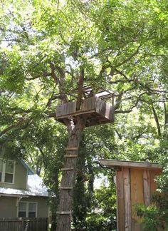 Inspiration: Backyard Treehouse Getaway — Austin