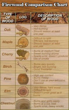 Ever wondered what type of wood is best for firewood? This handy guide breaks it down. #campfire