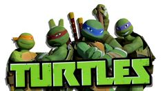 Teenage Mutant Ninja Turtles: Rise of the Turtles DVD Review