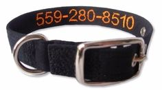 Tagless Dog Collar Embroider your phone number right on the inside or outside of your collar or both. Dog Lover Gifts, Dog Lovers, Embroidered Dog Collars, Custom Dog Collars, Collar Designs, Healthy Dog Treats, Dog Mom, Pet Care, Number