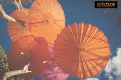 Libres #Bodas #Fotografia #Paraguas #Naranja