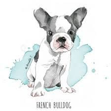 french bulldog watercolour - Google Search
