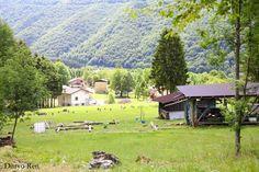 #parconaturale #prealpigiulie #friuliveneziagiulia #montagne #mountains #natura #nature #italy #canon #fotografia #photography #photoshop #focus #alberi #tree #flora #paese #village