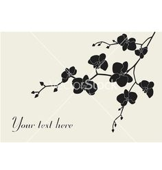 Stylized orchid branch vector on VectorStock®