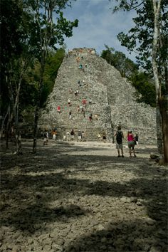 Coba is a globally known Mayan ruins city with several large temple pyramids, the highest being the Nohoch Mul pyramid which rises 42 meters (138) feet high. Yet, even though so well known in Maya archeology circles only a small portion of the site has been cleared from the jungle excavated and restored  http://twitter.com/ChichenItzaBob