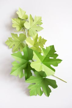 Craft With Conscience: Corrie Beth Hogg + Tutorial! — Sarah K. Paper Flower Art, Giant Paper Flowers, Flower Crafts, Diy Arts And Crafts, Diy Crafts, Origami Leaves, Chinese Money Plant, Paper Plants, Paper Leaves