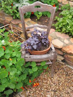 old chair planter Garden Chairs, Garden Planters, Lawn And Garden, Garden Art, Romantic Backyard, Chair Planter, Container Gardening, Garden Sculpture, Succulents