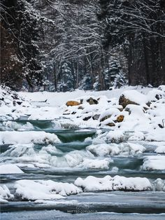 Landscape Pictures, Snow, Outdoor, Winter Time, Passion, Explore, Outdoors, Scenery Photography, The Great Outdoors